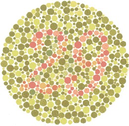 Color Blindness Test | Test Color Vision with Ishihara Test for ...